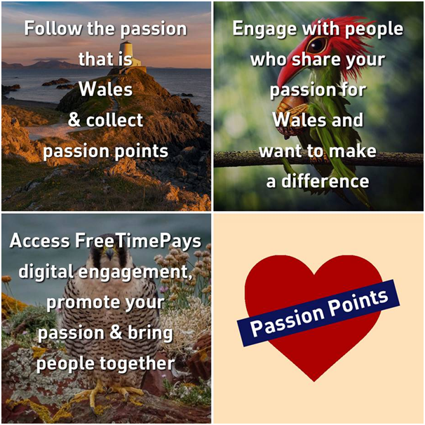 ItsYourWales+-+we%27re+all+about+promoting+people+with+passion+for+Wales!